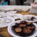 Rybí trhy