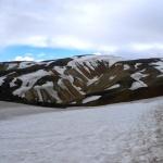Sněhová pole