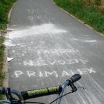 Na cyklostezce k Olympii