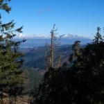 Výhled na Vysoké Tatry