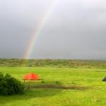 Þjónustumiðstöð