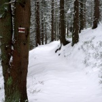 Panenský sníh na červené značce
